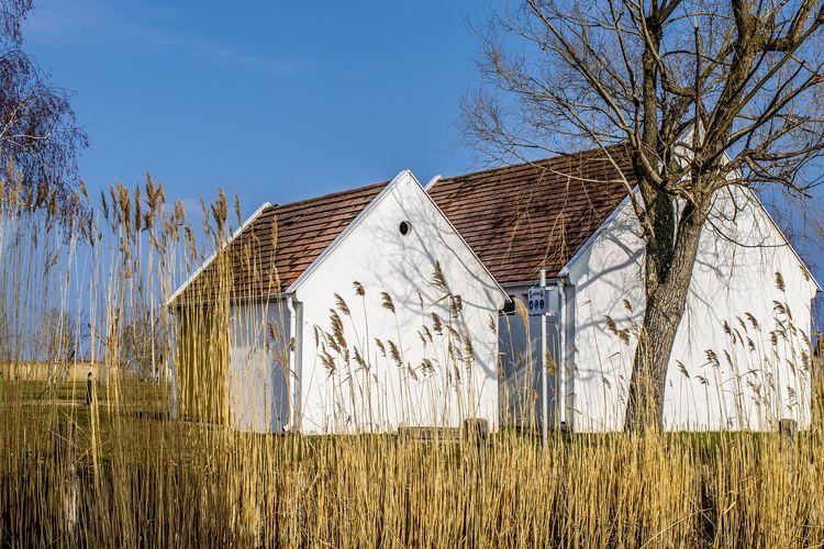 Private Huren Frauenkirchen Suche
